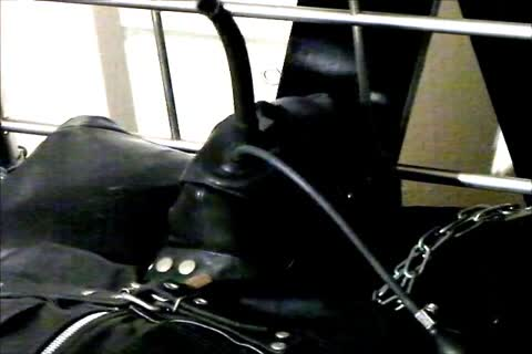 Wearing A Rubber Cat Suit Inside A Leather Body Bag chained To The sofa, Hooded And Gagged, Then Teased For Two Hours Until this guy cum.